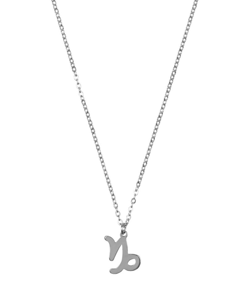 My Jewellery-Necklaces - Ketting Sterrenbeeld Bedel Steenbok - Silver coloured